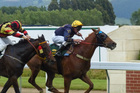 Chapel Star beats Leeboy at Wingatui yesterday. Photo / Otago Daily Times