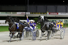 Smoken Up is first past the post in the Interdominion Grand Final from Themightyquinn at Alexandra Park. Photo / NZP