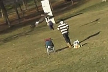 A still from the hoax video shows the eagle lifting a 'toddler' off the ground. Photo / YouTube