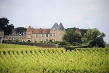 Chateau d'Yquem vineyards.Photo / AFP
