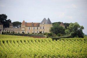 Chateau d'Yquem vineyards.Photo / AFP