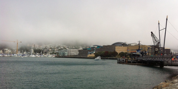 Loading Fog over Wellington Airport caused dealyed flights.Photo / Paul Harper