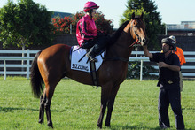 Sizzling will be a warm favourite at Doomben on Saturday. Photo / Getty Images