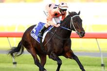 Black Caviar gave Australian racegoers ple