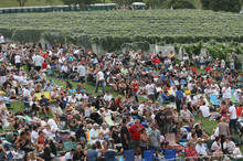 Summer concerts and events at the Villa Maria winery in Mangere draw big crowds. Photo / Glenn Jeffrey