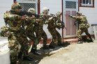 Plans to save money by boosting the role of the army reserve would end the