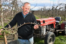 Fruitgrowers Association president Leon Stallard. Photo / Warren Buckland