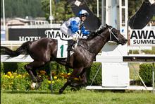 Mufhasa, ridden by Sam Spratt, wins the Tod Seeds Manawatu Challenge Stakes yesterday. Photo / Aaron Smale