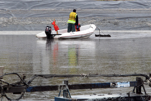The stench from the dumping of sulphides has caused distress in Wanganui. Photo / Stuart Munro