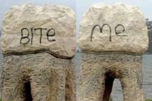 It isn't the first time the teeth have been vandalised. Photo / Otago Daily Times