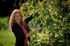 NZ Avocado Growers' Association chief executive Jen Scoular is predicting increased volumes. Photo / Supplied