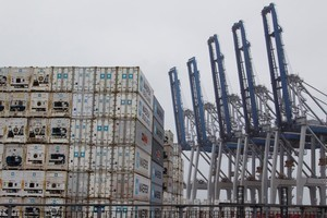 Cranes at Fergusson container terminal sit idle  during one of the recent port worker strikes. Photo / Paul Estcourt