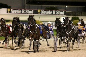 Smoken Up (10, centre) driven by Lance Justice, wins last year's series at Alexandra Park but is then disqualified. Photo / Natalie Slade