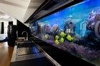 Electricity has been kept on to keep the 60 pet tropical fish alive under the Animal Welfare Act. Photo / Brett Phibbs