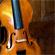 The really old and pretty flash violin. Photo / Babiche Martens