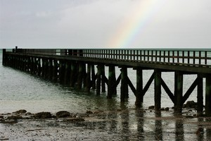 Cornwallis wharf is one of the region's golden opportunities for weekend visits. Photo / Kenny Rodger