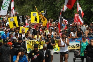A large hikoi marches towards the Waitangi Treaty Grounds on Waitangi Day. Photo / Natalie Slade