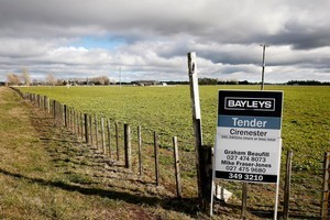 The sale of the Crafar farmland to a Chinese company has suffered a setback today. File photo / Christine Cornege