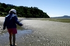 Peace and quiet on Karaka beach. Photo / The Aucklander