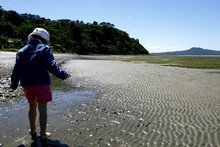 Peace and quiet on Karaka beach. Photo / The Aucklander