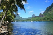 Moorea in Tahiti has the amour of France without the long flight to Paris. Photo / Thinkstock