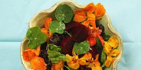 Pick a bunch of young nasturtium leaves and flowers to toss through your summer salad. Photo / Janna Dixon