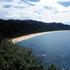 Totaranui beach in Abel Tasman National Park, Nelson, in the South Island of New Zealand.  Photo / Simon Baker