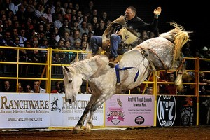 The international rodeo at Claudelands last November sold out and organisers are keen to repeat it. Photo / Supplied
