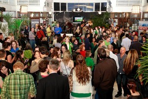 The Green Party celebration on election night. Photo / NZ Herald
