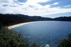 Totaranui beach in Abel Tasman National Park. Photo / Simon Baker