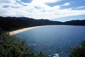 Totaranui beach in Abel Tasman National Park. Photo / Simon Baker