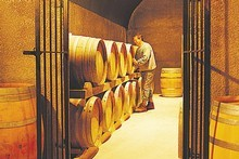 The barrel room at Murdoch James. Photo / Supplied
