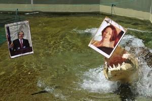 Harry the psychic croc picks Julia Gillard. Photo / Northern Territory News