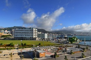 Waitangi Park, Wellington, where council contractors forgot to turn off sprinklers, saturating circus tents for a show last night. Photo / NZ Herald