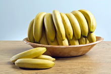 Because bananas are seedless & can't have babies, all plants of a single variety are clones of one another, grown from cuttings, unable to evolve, & equally vulnerable to diseases. Photo / Thinkstock