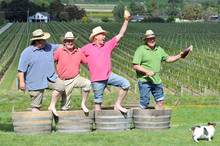 David Hart from StoneBridge, and Geordie Witters and Paul Tietjen from TW Wines, salute Steve Voysey from Spade Oak before the Meet the Makers vineyard tour. Photo / Dave Thomas, Gisborne Herald