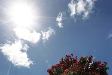 Finally, the sun has arrived. Photo / Doug Sherring