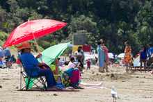 Popular Long Bay has struggled to cope with up to 25,000 visitors a day during the holiday season.  Photo / Greg Bowker