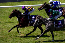 Gobi Ranger strides clear to win the Barneswood Farm Eclipse Stakes at Ellerslie. Photo / Sarah Ivey