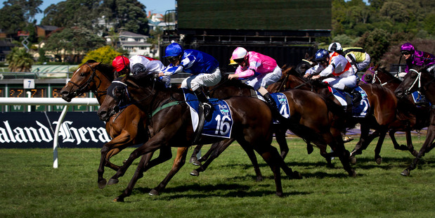 Miss Pelear (No 16, in blue) cuffs Full Of Spirit right on the line in the Rich Hill Mile at Ellerslie yesterday. Photo / Sarah Ivey