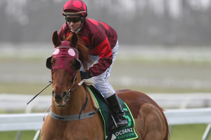 Rough Odds scampers away from Mosse to win the sprint at Tauranga yesterday. File photo / APN