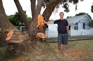 Damon Smith says if the tree doesn't go, he will have to move his family somewhere else. Photo / Mark Mitchell