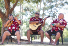 The Vaimutu string band practise before the Pasifika Festival. Photo / Richard Robinson