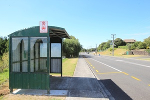 A man in a silver car was seen yesterday filiming kids getting on and off the bus near Palmers Garden Centre on Ohauiti Rd. Photo / Bay of Plenty Times