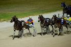 Ohoka Punter (6) wins the $250,000 Woodlands Stud Northern Derby at Alexandra Park last night. Photo / Dean Purcell