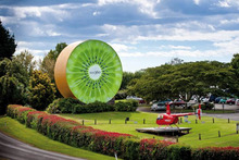 Kiwi 360 hosts a giant kiwifruit. Photo / Supplied