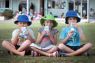 Six-year-olds Cooper Duff, Natalie Welch-White and Vadem Quelch enjoy their free milk at Whangarei's Kamo Primary School.  Photo / Natalie Slade