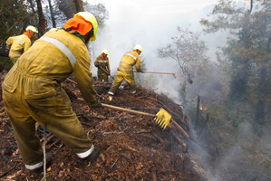 The union's main focus remains on the health and safety of firefighters. Photo / Rotorua Daily Post