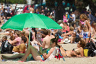 Hundreds flocked to beaches around Auckland this summer. Photo / Greg Bowker
