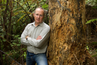 Phil Twyford is worried that kauri may disappear. Photo / Richard Robinson